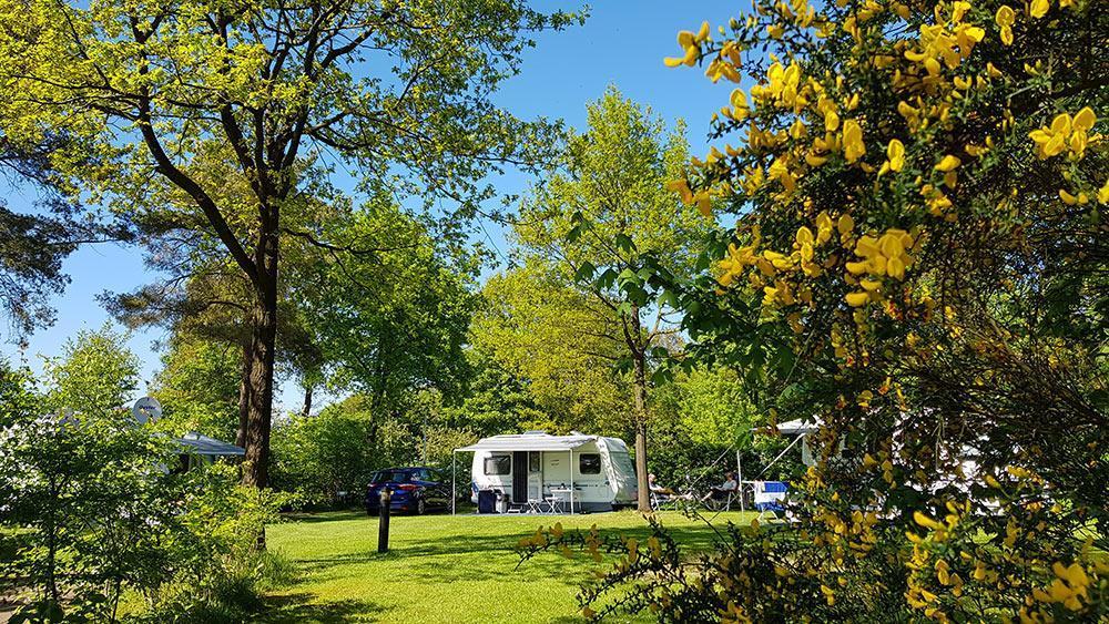 camping17